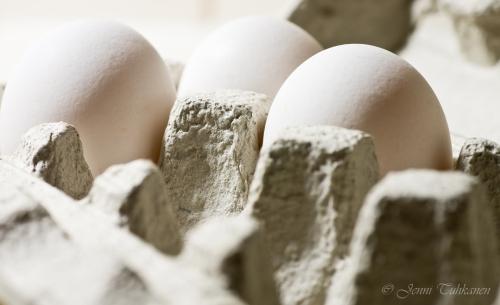 071 Eggs