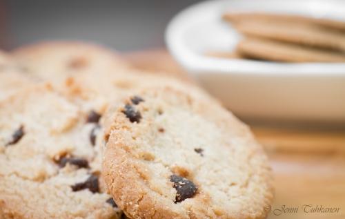 093 Biscuits